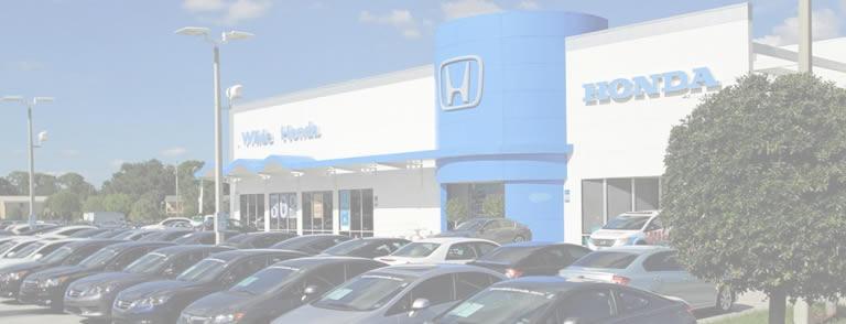 Wilde Honda